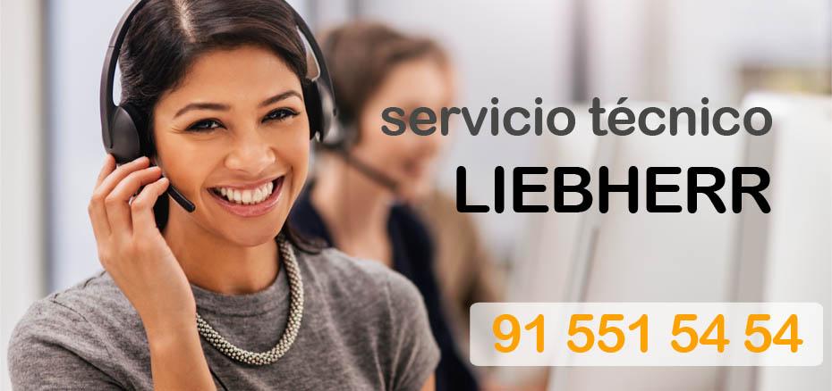 Telefono servicio tecnico Liebherr en Madrid y distritos